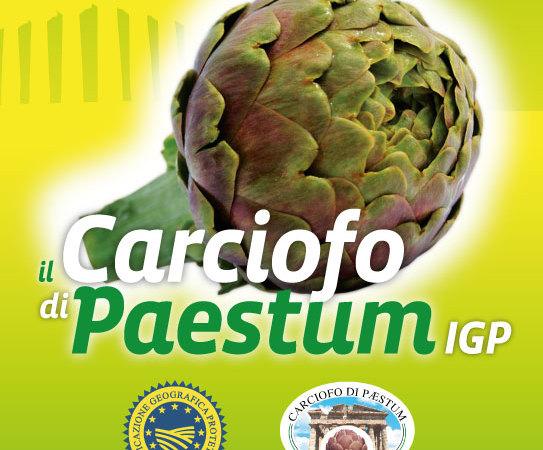 carciofo_paestum_2018